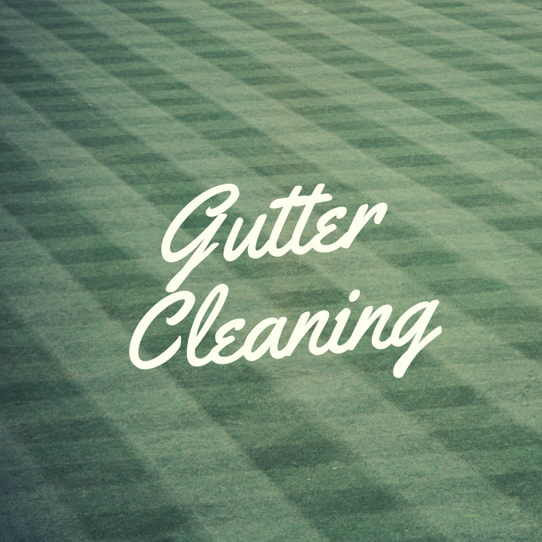 Gutter Cleaning in Plainfield