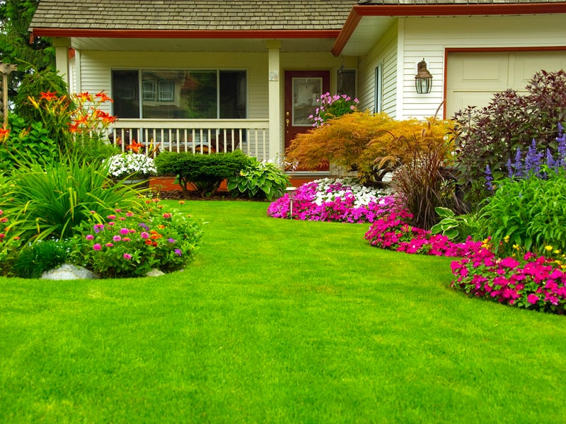 landscaped lawn in plainfield