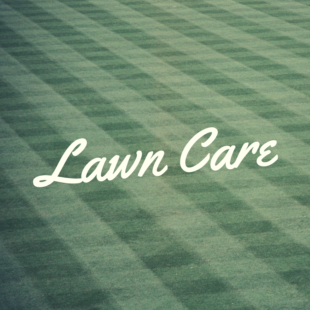 lawn care in plainfield