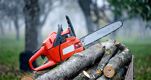 tree service in plainfield