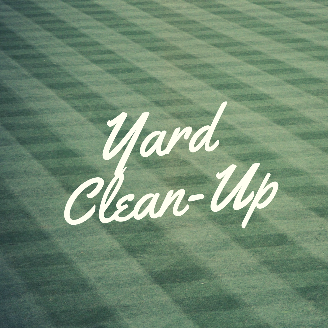 yard clean up in plainfield