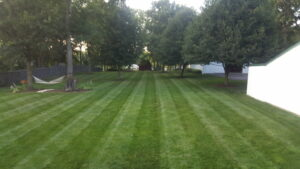 how to get lawn stripes